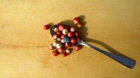 Beerenmoosbeer- und -blaubeerdraufsicht Stockbild