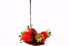 Beerenschokolade Lizenzfreie Stockfotos