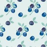 Beerenvektor-Hintergrundillustration Stockfoto