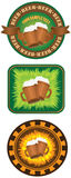 Beermats Royalty Free Stock Photos