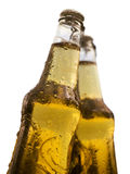 Beers. Two bottles of beer with water drops on white background Royalty Free Stock Images
