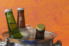 Beers on ice. Cold bottles of beer in bucket with ice Royalty Free Stock Photography