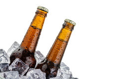 Beers on ice with copy space Royalty Free Stock Photos