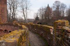 Beerselkasteel in Zuidelijk Vlaanderen royalty-vrije stock afbeeldingen