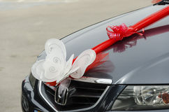 Beersheba, Israel. March 24,  White butterfly and scarlet bow on a black wedding car Stock Image