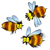 Bees. Cartoon illustration of three bees on white background royalty free illustration