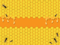 Bees Background. Yellow Bees hive hexagon background with honey vector illustration