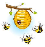Bees and a beehive. Illustration of a honey bee and comb Stock Images