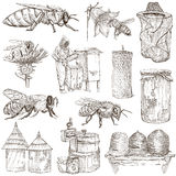 Bees, beekeeping and honey - hand drawn illustrations Royalty Free Stock Image