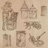 Bees, beekeeping and honey - hand drawn vector pack 9 Royalty Free Stock Photo
