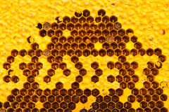 Bees build honeycomb. Be letter word   sweet Royalty Free Stock Photo