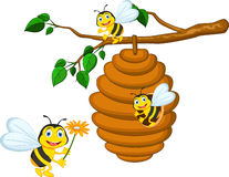 Bees cartoon holding flower Stock Photography