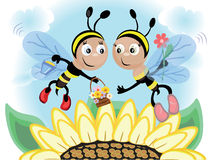 Bees CMYK Stock Photos