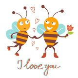 Bees couple Stock Images