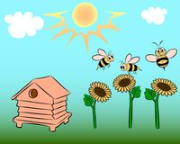 Bees on the field. On the field there is a beehive, sunflowers and flying bees Royalty Free Stock Photography