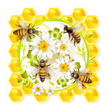 Bees with flowers. And honeycombs royalty free illustration