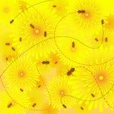 Bees on flowers. Illustration of honeybees buzzing around dandelio royalty free illustration