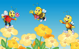 Bees and flowers Stock Image