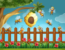 Bees flying around beehive in the garden Royalty Free Stock Photo