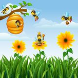 Bees flying around the beehive in the garden Stock Image