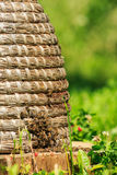 Bees in hey beehive Royalty Free Stock Photos