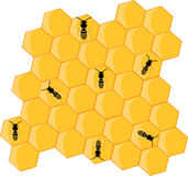 Bees and hive Royalty Free Stock Images