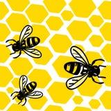 Bees and honey royalty free stock photos