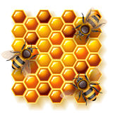 Bees and honey. Vector illustration - bees on honeycomb, EPS 10, RGB. Use transparency and blend modes stock illustration