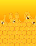 Bees and honey background. Design royalty free illustration