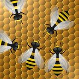 Bees on honeycells,3D Illustration Stock Photos