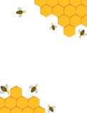 Bees and honeycomb background Royalty Free Stock Photos