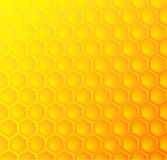 Bees honeycomb, seamless pattern background. Vector illustration Royalty Free Stock Image