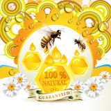 Bees and honeycombs. Over floral background with drops Royalty Free Stock Photography