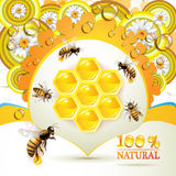 Bees and honeycombs Stock Images