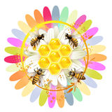 Bees and honeycombs Royalty Free Stock Images