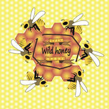 Bees and honeycombs. Bees collect honey illustration vector beautiful Royalty Free Stock Images