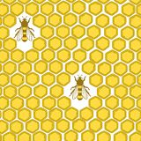 Bees and honeycombs, colorful seamless pattern. Bees and honeycombs, hand drawn seamless pattern. Colorful backdrop with insects. Beekeeping. Decorative royalty free illustration