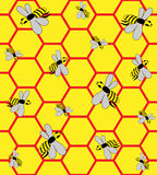 Bees on Honeycombs Stock Photo