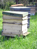 Bees houses. In these houses live beehives stock images