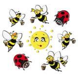 Bees, ladybirds around the sun. Royalty Free Stock Image
