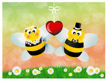 Bees in love Royalty Free Stock Photography