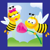 Bees and roses Stock Images