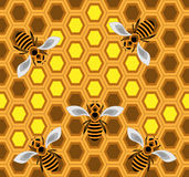 Bees. Seamless pattern with bees - background Royalty Free Stock Photos