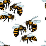 Bees seamless pattern Royalty Free Stock Photos