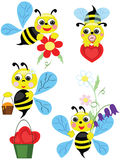 Bees, Set. Royalty Free Stock Images