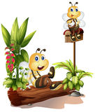 Bees sitting on a trunk and on the mailbox. Illustration of bees sitting on a trunk and on the mailbox on a white background Stock Photos