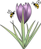 BEES AND TULIP Royalty Free Stock Photos