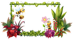 Free Bees With Flowers Royalty Free Stock Photography - 33693167