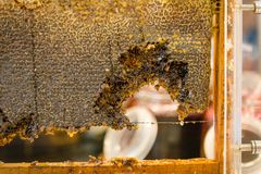 Beeswax. In restaurant stock images