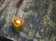 Beeswax candle Royalty Free Stock Photo